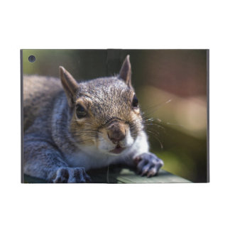 Cute Baby Squirrel Nature Photography Case For iPad Mini
