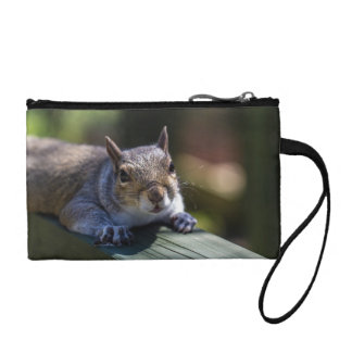 Cute Baby Squirrel Nature Photography Coin Purse