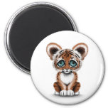 Cute Baby Tiger Cub with Blue Eyes on White 6 Cm Round Magnet