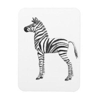 Cute Baby Zebra Drawing Rectangular Photo Magnet