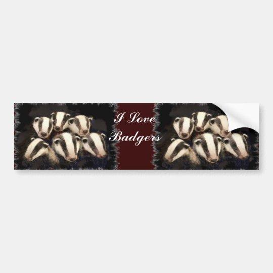 Cute Badger Cubs Bumper Sticker