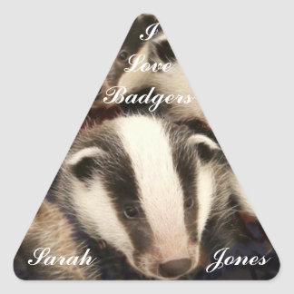 Cute Badger Cubs Triangle Sticker