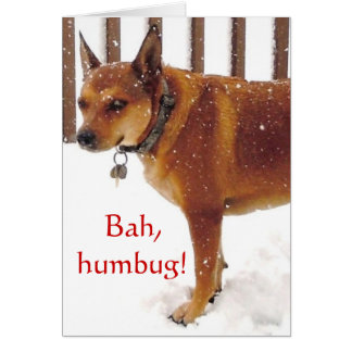 Cute Bah, Humbug! Grumpy Red Cattle Dog Diva Card