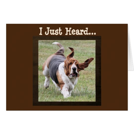 Cute Basset Hound on Funny Birthday Card with