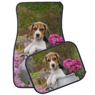 Cute Beagle Dog Puppy in a Milk Churn - floor-mats Car Mat