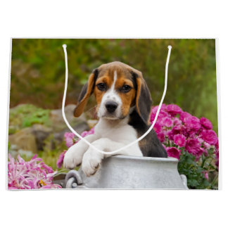 Cute Beagle Dog Puppy in a Milk Churn - Wrapbag Large Gift Bag