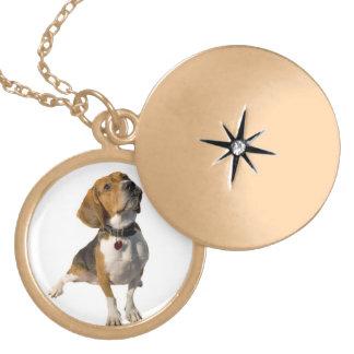 Cute Beagle Dog Round Locket Necklace