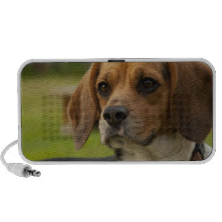 Cute Beagle Puppy Dog iPhone Speaker