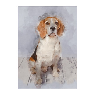 Cute Beagle Watercolor Portrait Acrylic Wall Art