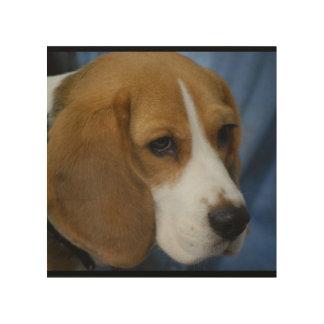 Cute Beagle Wood Print