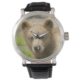 Cute Bear Watch
