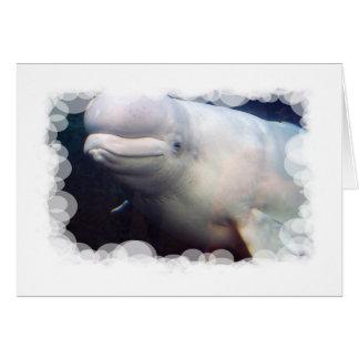 Cute Beluga Whale Greeting Card