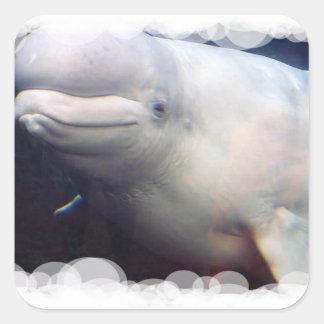 Cute Beluga Whale Sticker