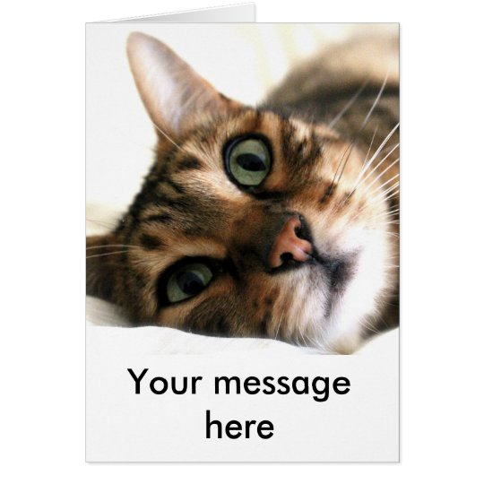 Cute Bengal Cat in Bed Custom Card