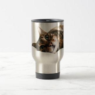 Cute Bengal Cat in Bed Picture Mug