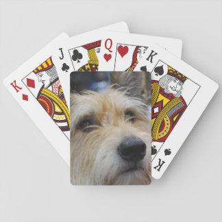 Cute Berger Picard Dog Poker Deck