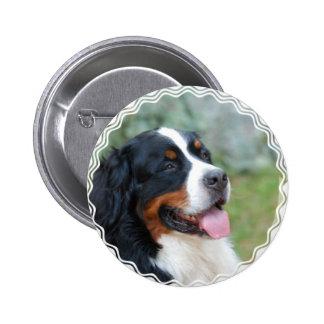 Cute Bernese Mountain Dog Pinback Buttons