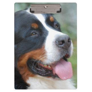 Cute Bernese Mountain Dog Clipboard