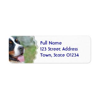 Cute Bernese Mountain Dog Return Address Label