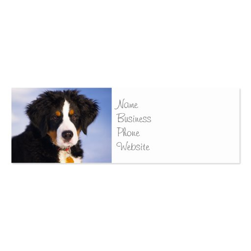Cute Bernese Mountain Dog Puppy Picture Business Cards