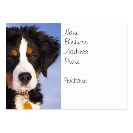 Cute Bernese Mountain Dog Puppy Picture Business Card Template