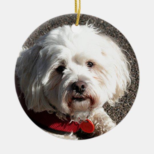 Cute bichon frise dog christmas ornament