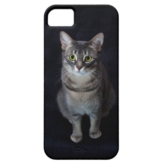 Cute Big-Eyed Cat Mobile Phone Case