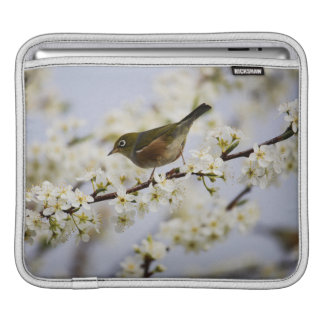 Cute Bird and Cherry Blossom Sleeves For iPads