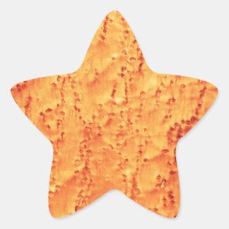 Cute Bird's Eye Maple Wood Grains Patterns Star Sticker