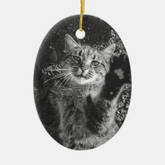 Cute Black and White Cat Hug Christmas Ornament