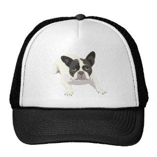 Cute Black and White French Bulldog on Blue Back Cap