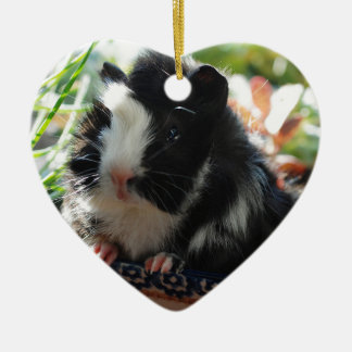 Cute Black and White Guinea Pig Christmas Ornament
