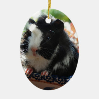 Cute Black and White Guinea Pig Christmas Ornament