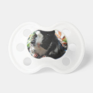 Cute Black and White Guinea Pig Dummy