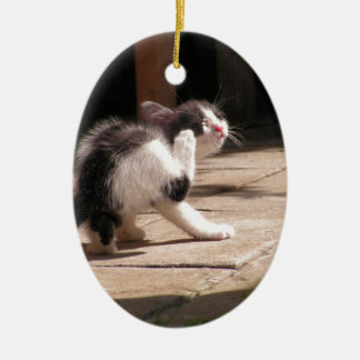 Cute Black and White Kitten Scratching Christmas Ornament