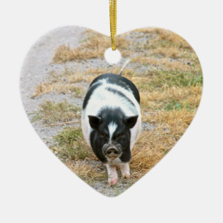 Cute Black and White Potbelly Pig Photo Ceramic Heart Decoration
