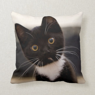 Cute Black And White Tuxedo Kitten Cushion