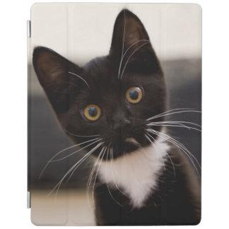 Cute Black And White Tuxedo Kitten iPad Cover