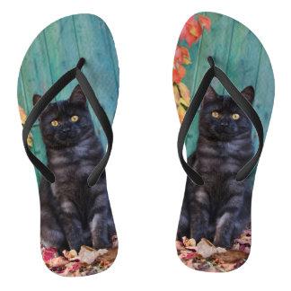 Cute Black Cat Kitten with Blue Door Photo - flips Flip Flops