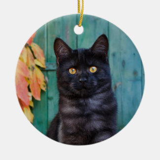 Cute Black Cat Kitten with Red Leaves Blue Door ' Christmas Ornament