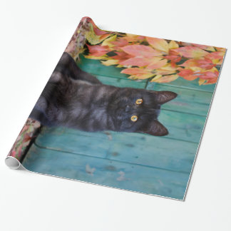 """Cute Black Cat Kitten with Red Leaves Blue Door """""""" Wrapping Paper"""