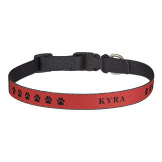 Cute black dog paws feet red name pet collar