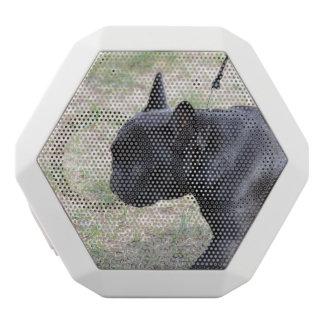 Cute Black French Bulldog White Boombot Rex Bluetooth Speaker