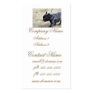 Cute Black French Bulldog Pack Of Standard Business Cards