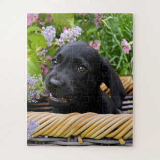 Cute Black Labrador Retriever Dog Puppy Pet Photo Jigsaw Puzzle