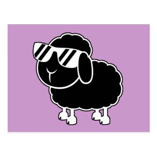 Cute Black Sheep Cartoon Postcard