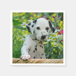 Cute black spotted Dalmatian Baby Dog Puppy Photo Paper Serviettes