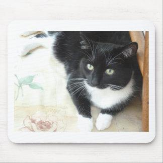 Cute black & white cat mouse mat