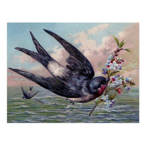 Cute Blue Red Swallow Bird And Pretty Flowers Postcards