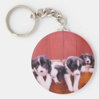 Cute Border Collie Puppies Keychain